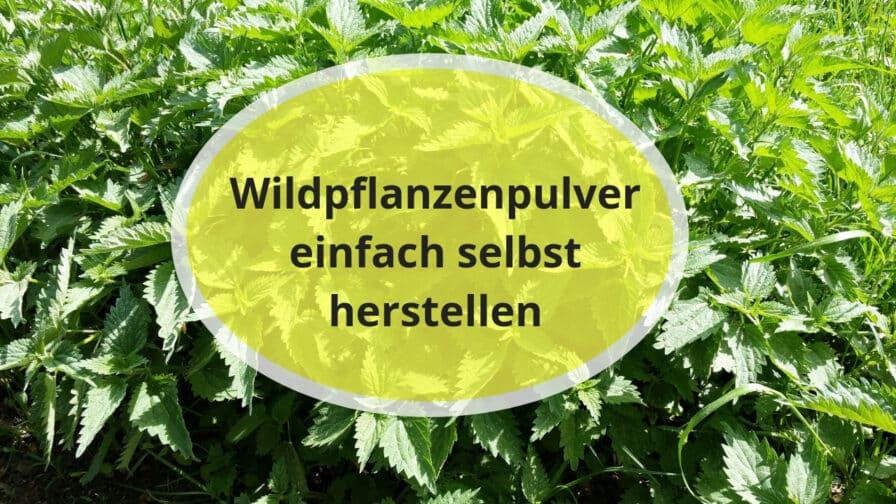 Wildpflanzenpulver