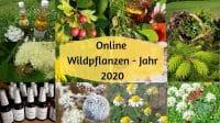 Wildpflanzenjahr 2020