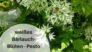 weißes Bärlauch-Blüten-Pesto (c) Heike Engel